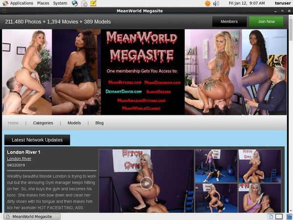 Mean World Valid Account