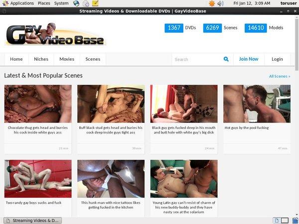 Premium Gay Video Base